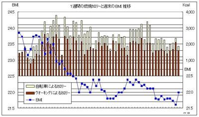 20081018_bmi220